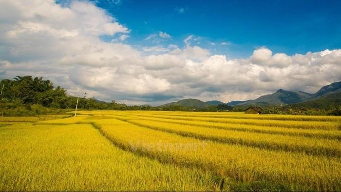 Thiên nhiên đẹp diệu kỳ ở đất trời Bình Liêu trong những ngày mùa vàng