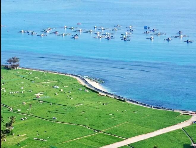 Đắm mình trong thiên nhiên, màu xanh của đồng tỏi, xanh của biển