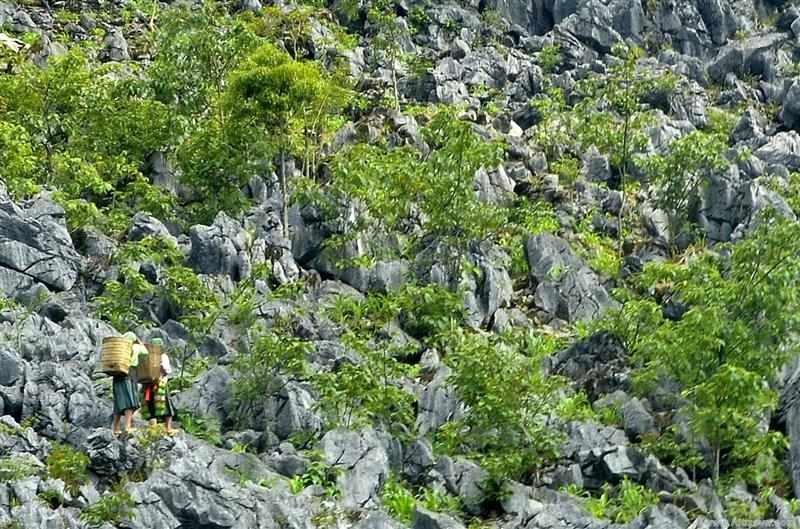 Cao Nguyên đá Đồng Văn là công viên địa chất toàn cầu được UNESCO công nhận đầu tiên của Việt Nam