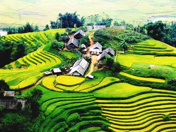 Top 9 cao nguyên đẹp nhất Việt Nam