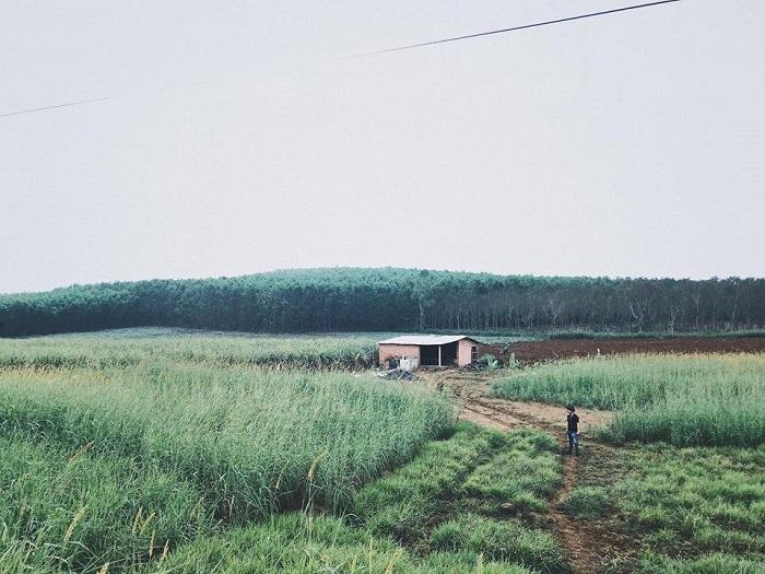 Cao nguyên Vân Hòa
