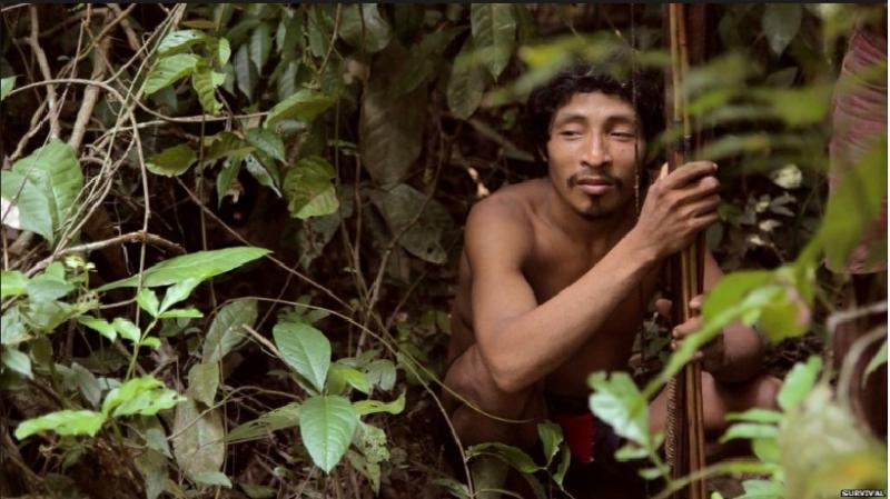 Hình ảnh bộ tộc Korowai