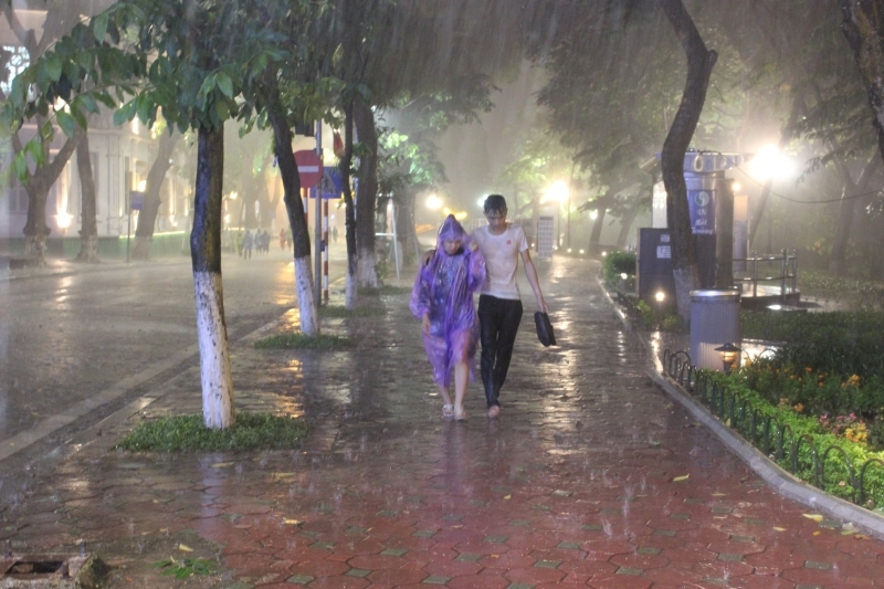 Không trú mưa dưới cây, ở khu vực cao hơn xung quanh