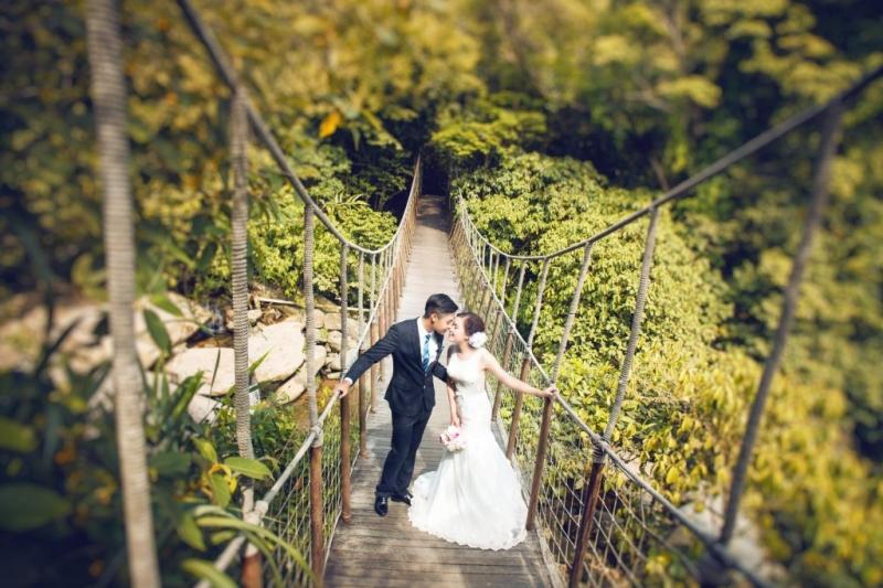 Cầu treo - đường dẫn đến thác Bạc lên hình cũng thật lung linh