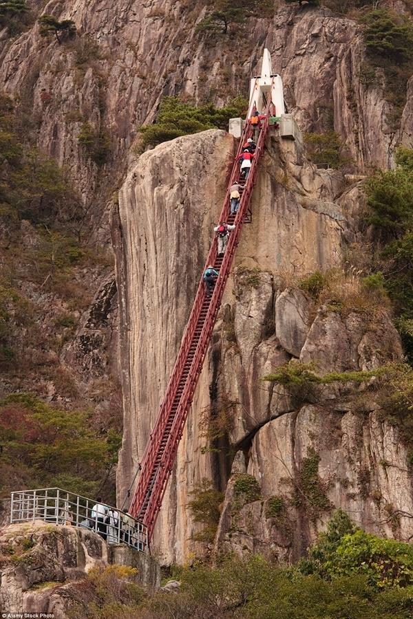 Cầu Daedunsan, Hàn Quốc