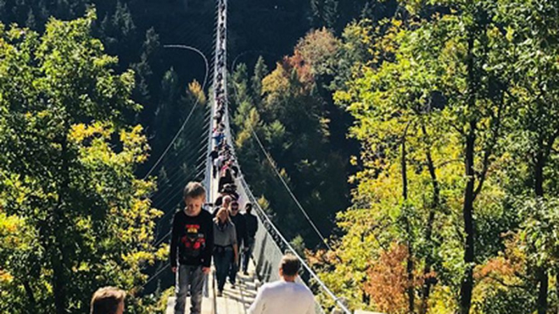 Cầu treo Geierley, Đức