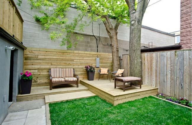 Những cây có lá to, rộn, sức sống khỏe sẽ đem đến thịnh vượng và sức khỏe dồi dào cho người trong nhà.