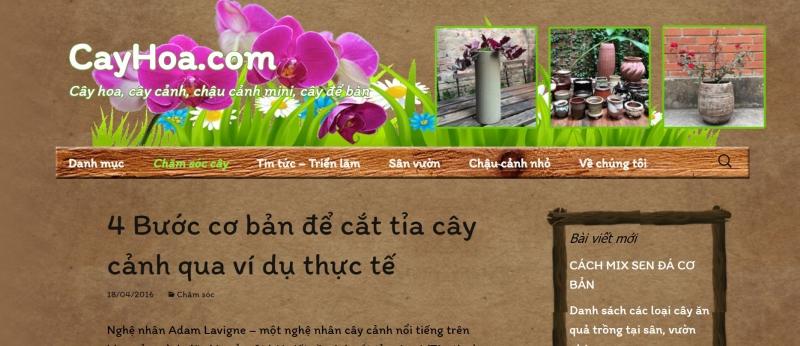 cayhoa.com