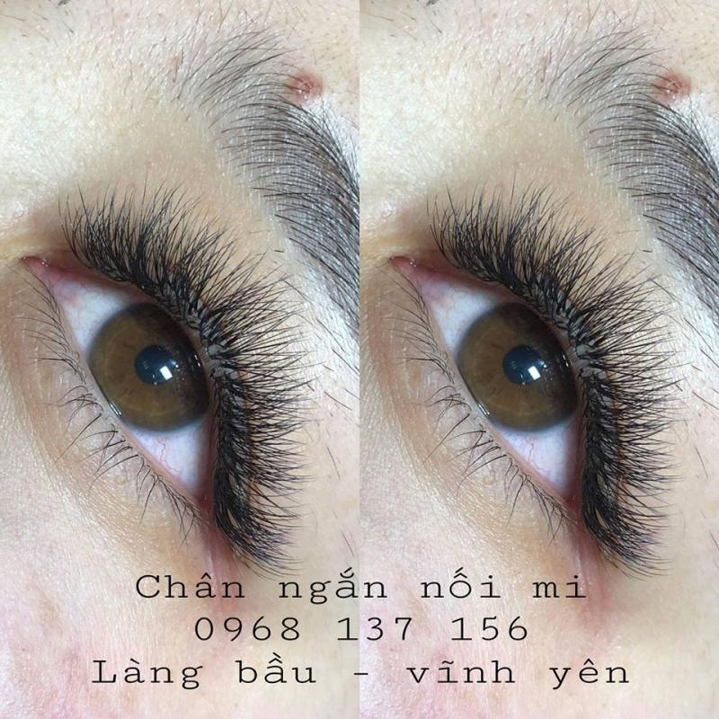 Chân Ngắn Nối Mi (Trịnh Thị Bình Minh)