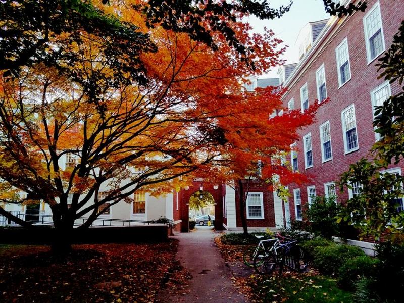 Ảnh chụp Đại học Harvard của Châu Thanh Vũ (Nguồn: Facebook Châu Thanh Vũ)