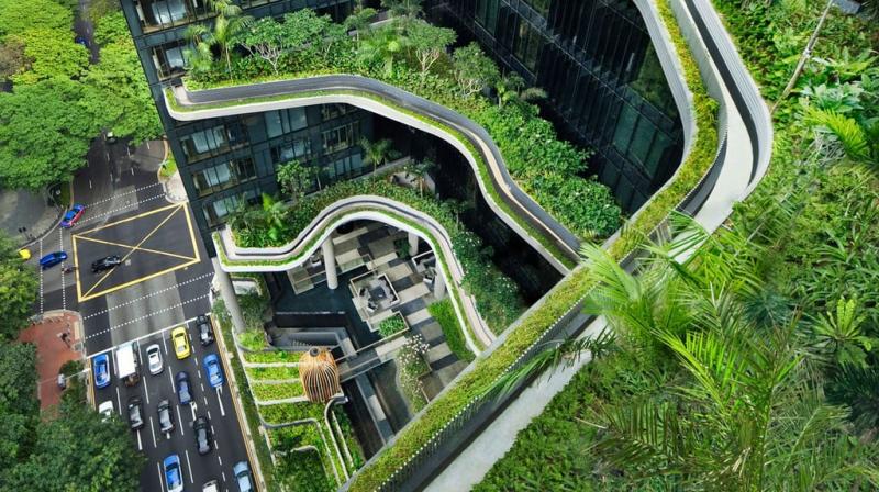 Kiến trúc độc đáo với nhiều cây xanh bên ngoài - Chicland Hote (Nguồn Internet)