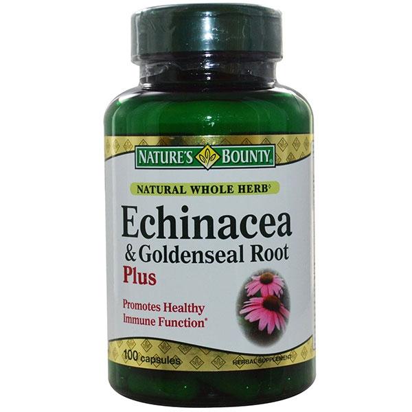 Chiết xuất từ rễ Echinacea có thể được dùng chữa các bệnh sổ mũi, ốm, cảm hiệu quả.