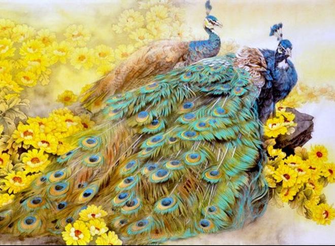 Chim công - Khổng tước