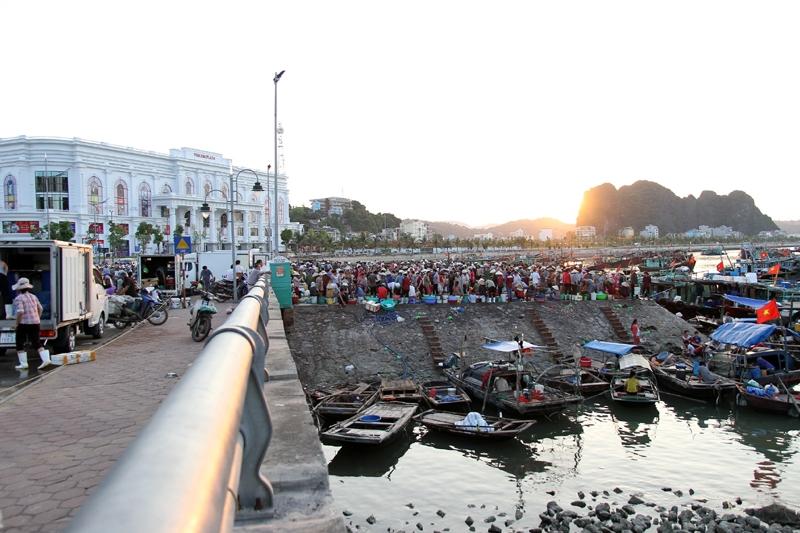 Chợ cá cảng Hạ Long