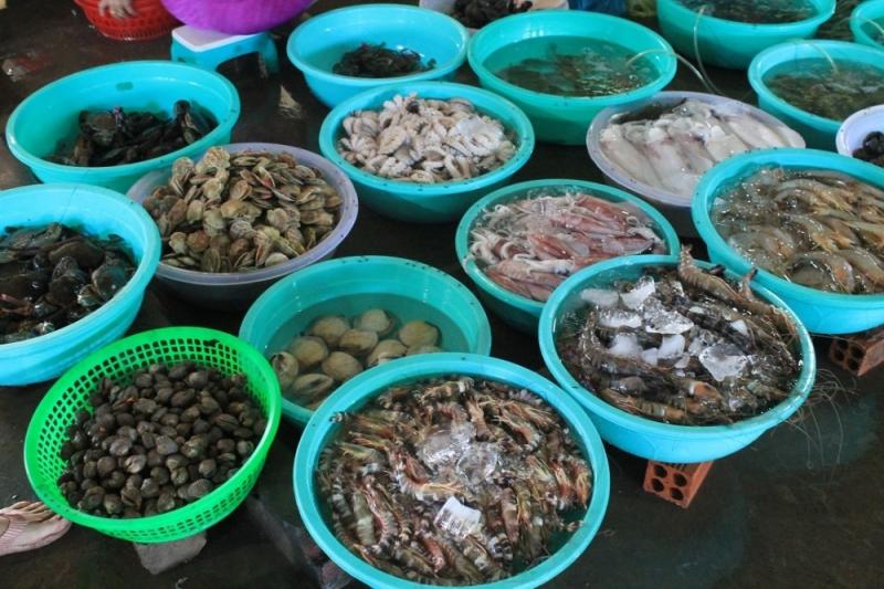 Đa dạng các loại hải sản khác nhau