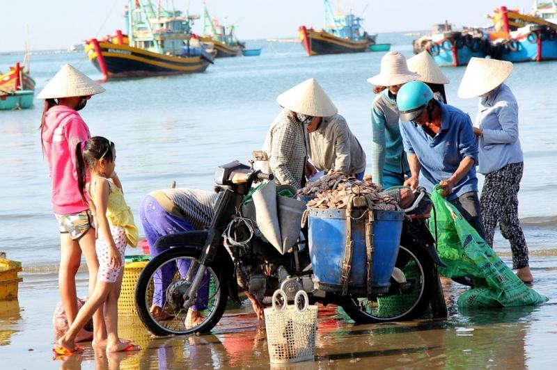 Những loại hải sản ngon nhất của ngư dân