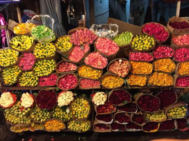 Những loại hoa tươi lung linh sắc màu