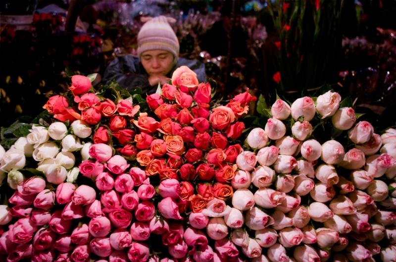 2h đêm ở chợ hoa Nghi Tàm