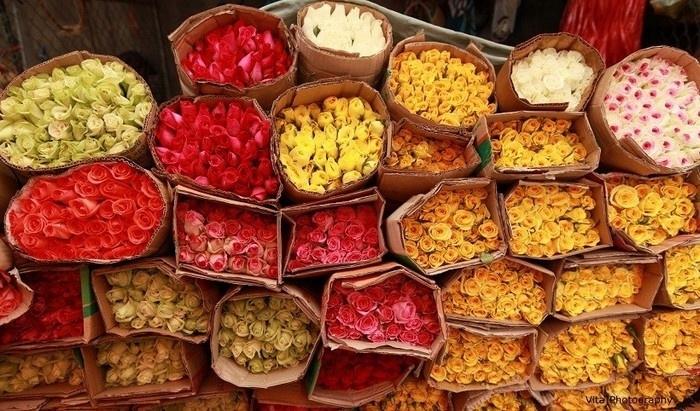 Những bông hoa đẹp kiêu sa giữa chợ hoa Hồ Thị Kỷ