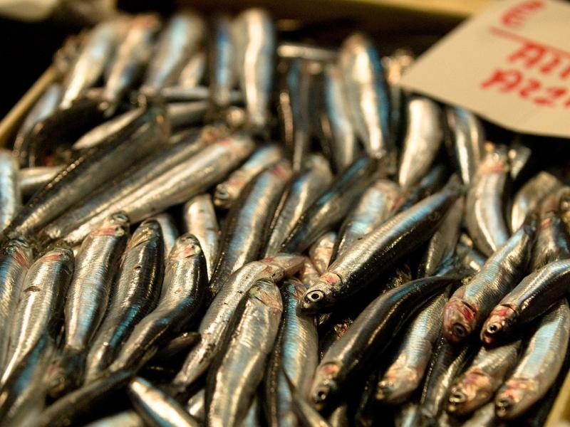 Cá tươi rói ở khu chợ này