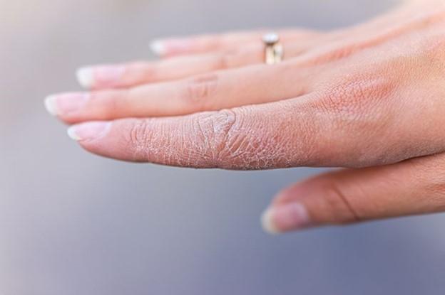 © Shutterstock.com