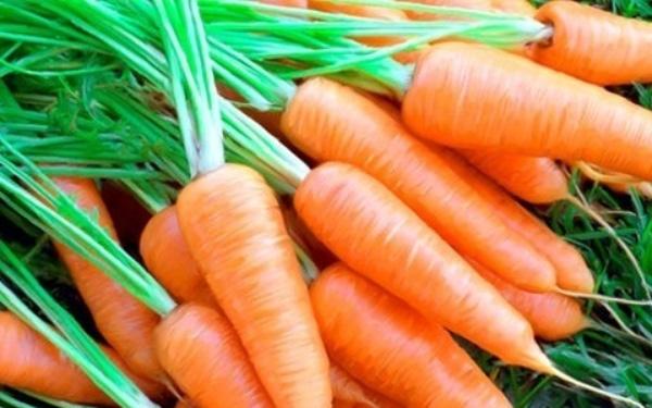Táo xanh và cà rốt
