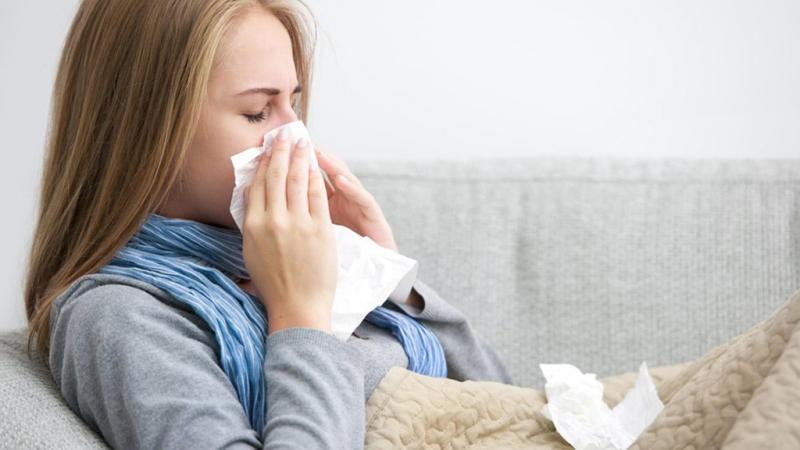 Hạt rau thì là chữa cảm lạnh rất hiệu quả