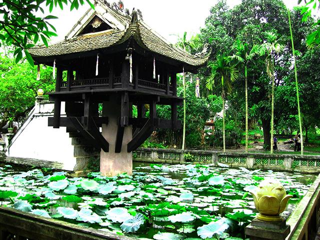 Hồ Linh Chiểu được phủ xanh lá sen