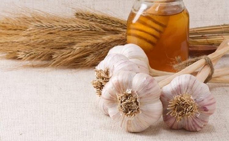 Mật ong và tỏi hỗn hợp điều trị bệnh đau dạ dày hiệu quả