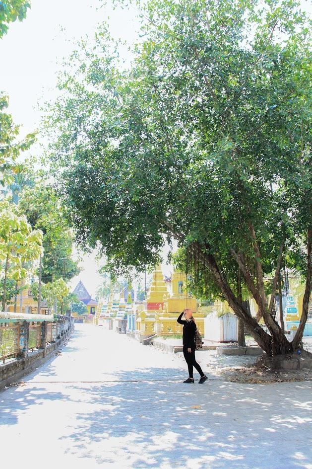 Lối nhỏ bên trong chùa với nhiều bóng cây thích hợp cho việc đi dạo và chụp hình