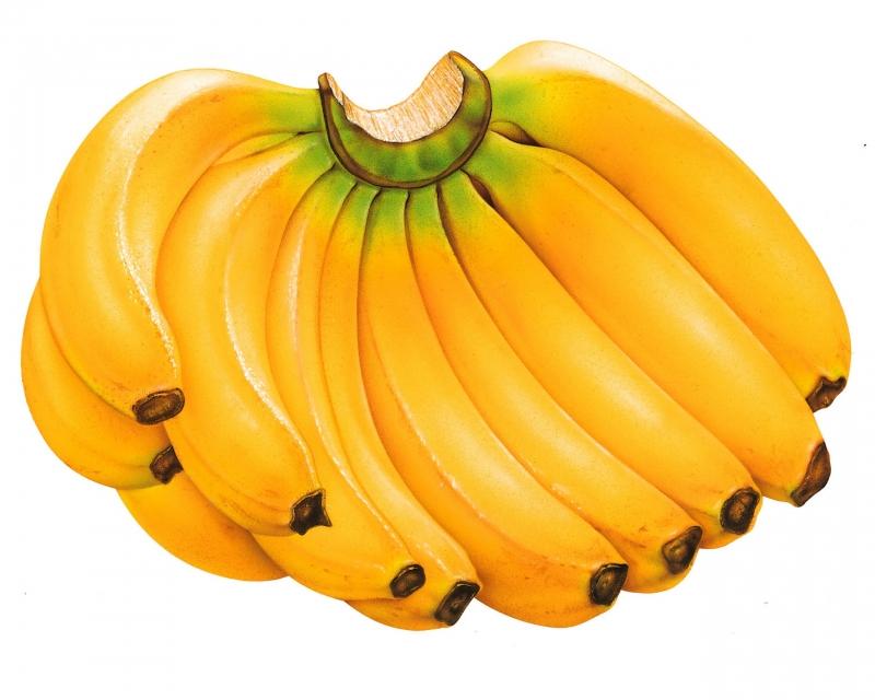 Trong chuối có nhiều vitamin, là nguồn bổ trợ năng lượng không thể thiếu những ngày Tết