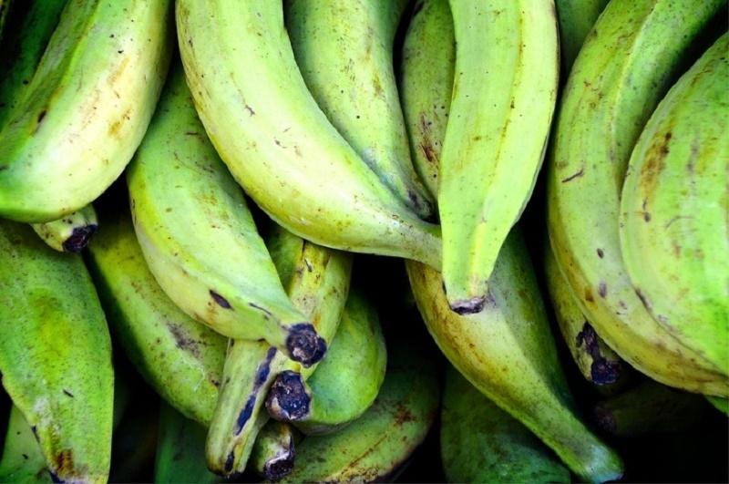 Chuối xanh có chứa nhiều tannin gây táo bón