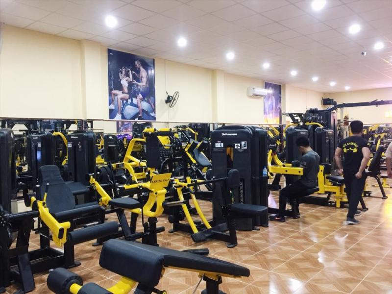 Clb Gym Sức Khỏe Vàng