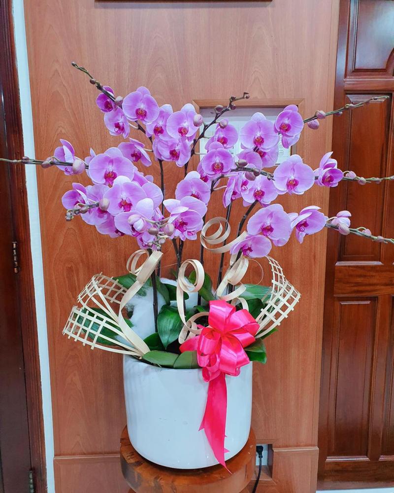 Clover Flower Shop