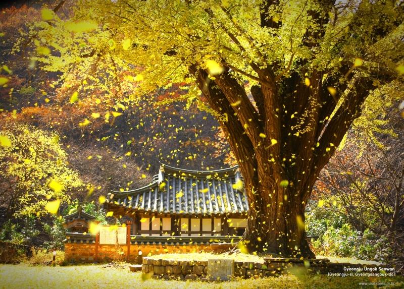 Tuyệt tác kiến trúc và nghệ thuật Gyeongju