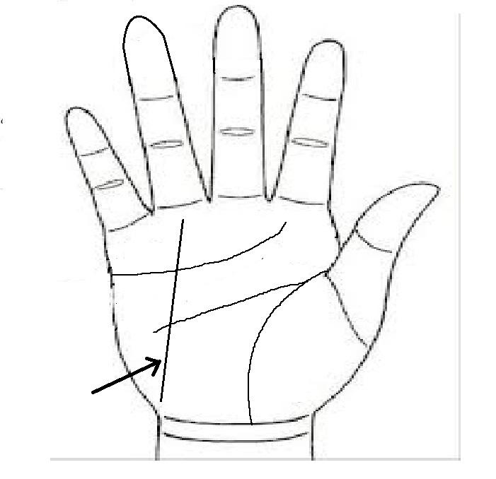 Top 10 dấu hiệu trên bàn tay chứng tỏ bạn có năng khiếu về nghệ thuật