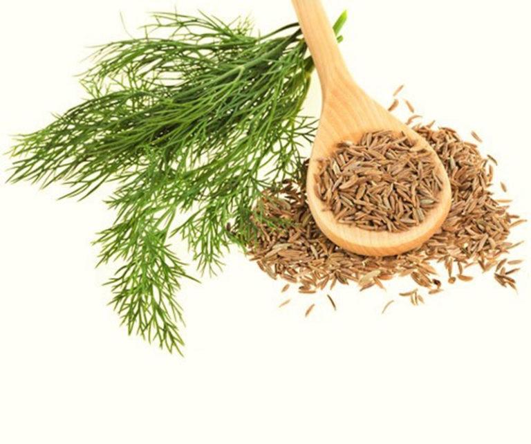 Hạt thì là còn rất hữu ích cho quá trình cai nghiện