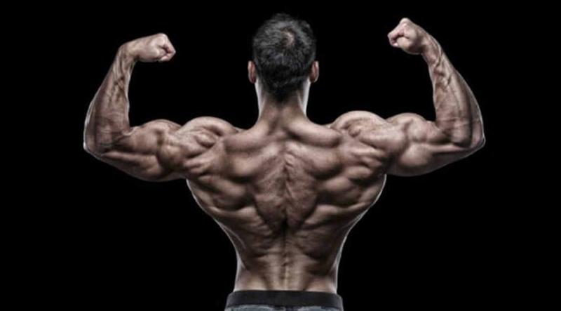 Một tấm lưng rộng là điều cần thiết nếu bạn muốn lôi cuốn phái nữ