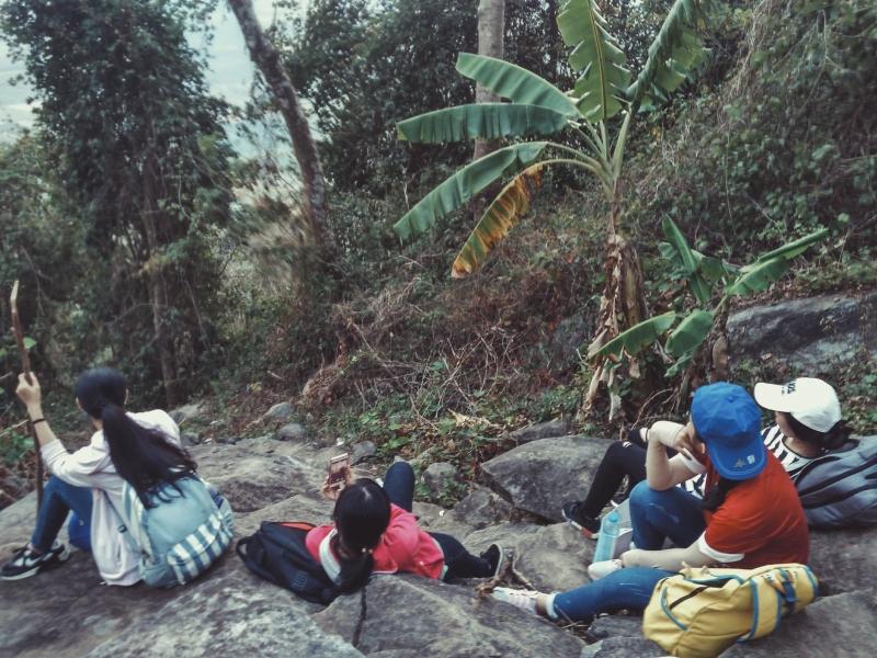 Đường cột điện thích hợp cho người lần đầu leo núi