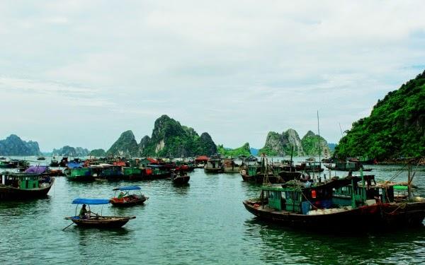 Tàu thuyền trên làng chài Cô Tô