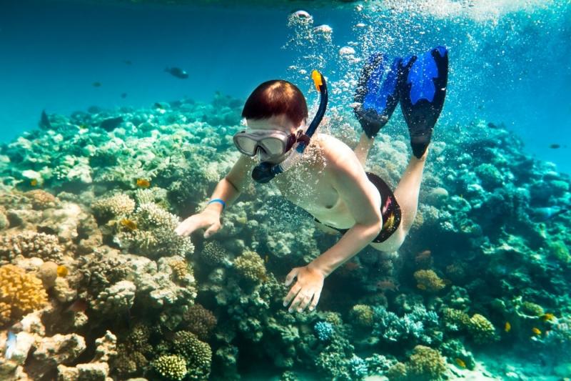 Lặn biển ở Côn Đảo