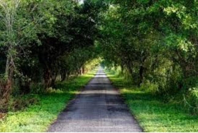 Con đường đẹp nhất miền Tây