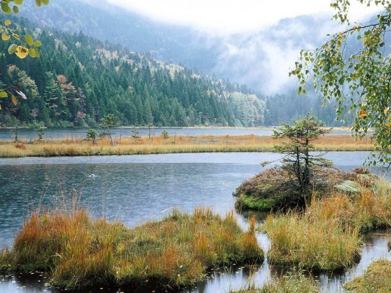 Hồ nước tự nhiên cùng đồi núi bao quanh khu rừng