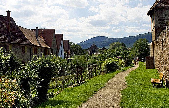 Con đường xuyên qua Đồi Rolling đến Làng Alsatian  ở Pháp
