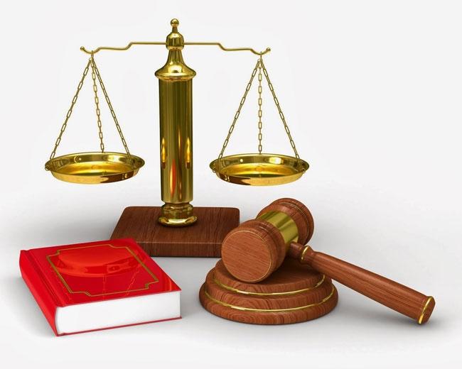 Học Luật lí lẽ luôn đặt lên trên