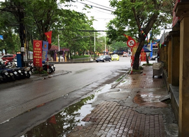 Mưa làm dịu bớt không khí nóng bức, rửa sạch bụi bặm của phố phường, tưới mát các cây xanh của thành phố.
