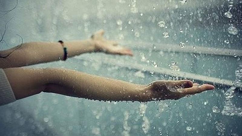 Cơn mưa tưới mát vạn vật, mang đến cho con người và thiên nhiên một sức sống mới hơn bao giờ hết.