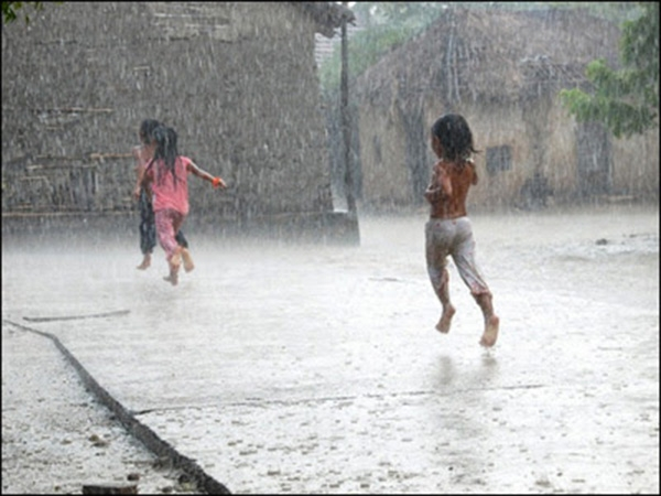 Thế mà mấy cậu nhóc ở xóm tôi lại chạy ra đường tắm mưa. Chúng nô đùa, nhảy nhót, hò hét ầm ĩ.