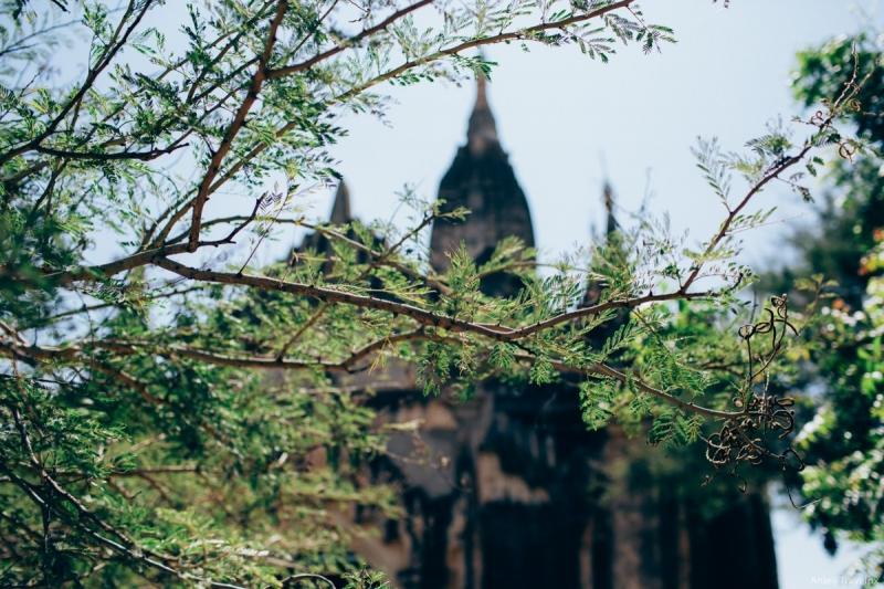 Con người và nắng Bagan