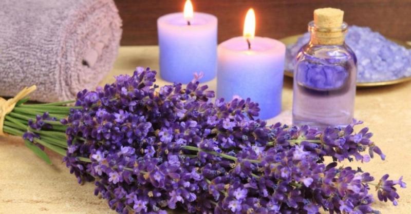 Tinh dầu oải hương giúp giữ bình tĩnh và thư giãn